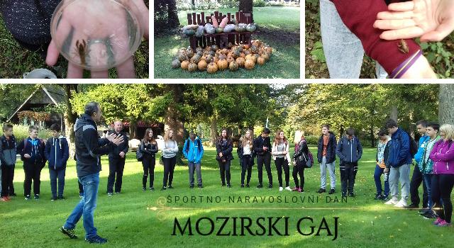 Športno-naravoslovni dan Mozirski gaj